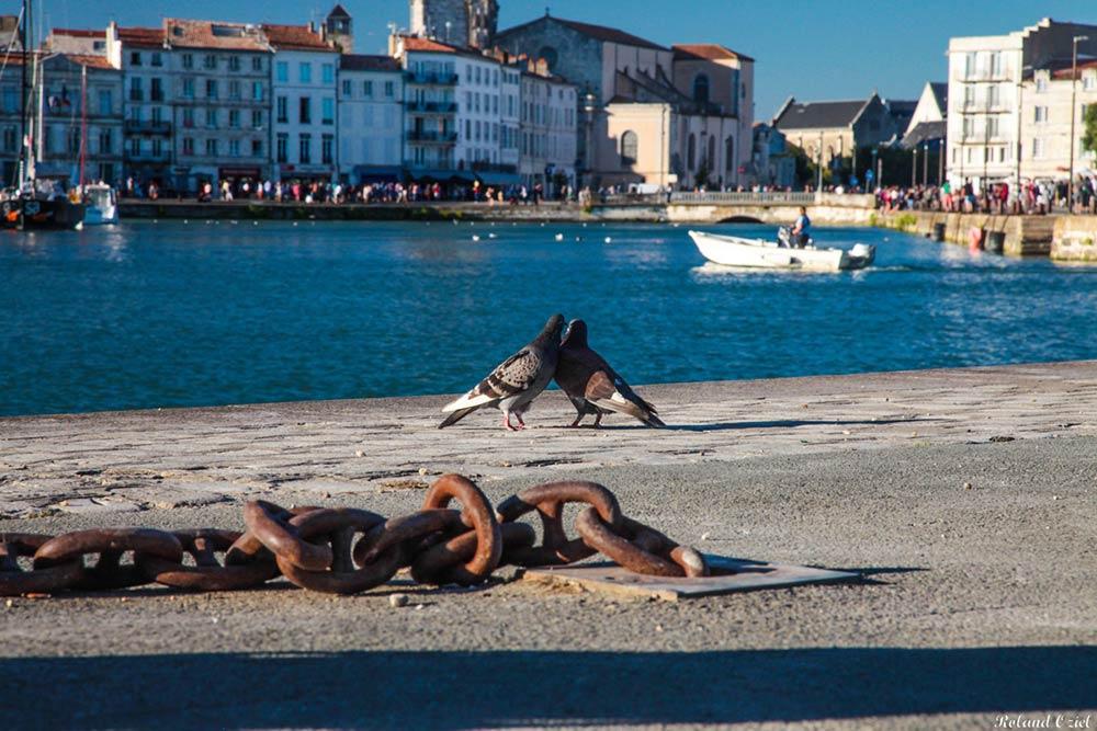 Camping à proximité de La Rochelle