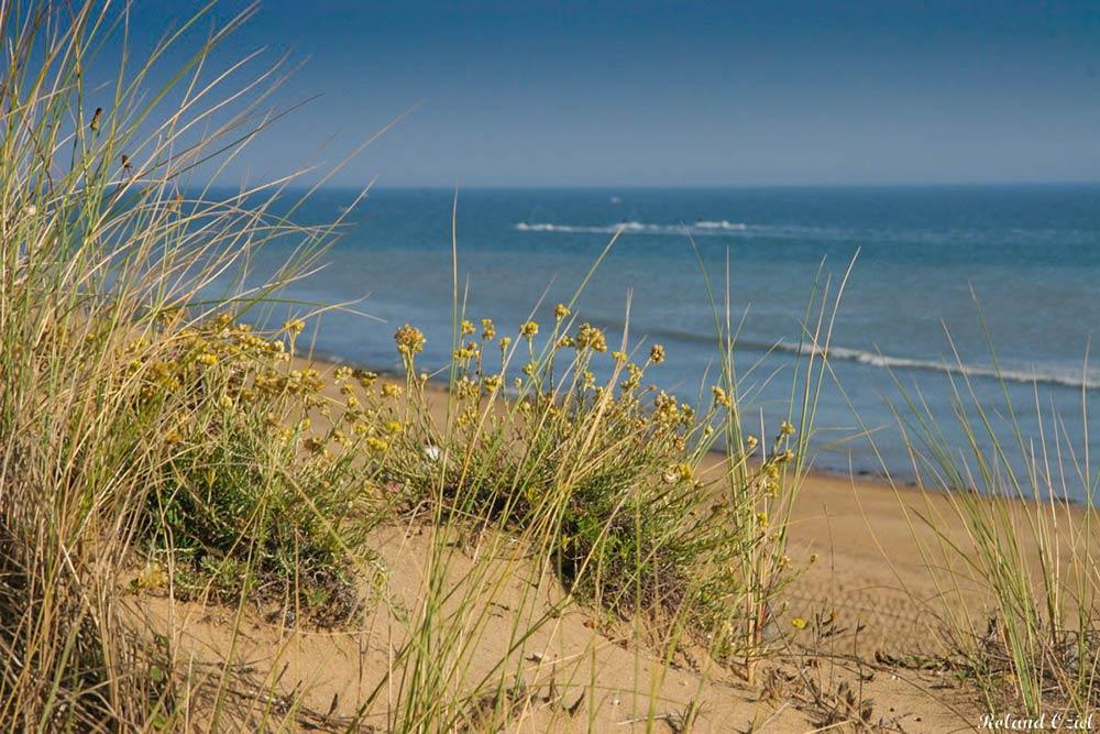plages du sud Vendée la tranche sur mer