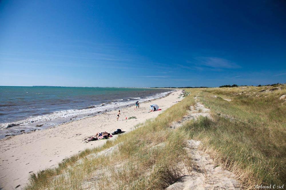 camping proche des plages Vendée